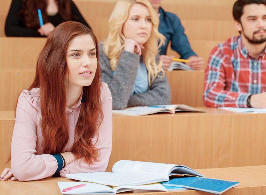 Дополнительные образовательные программы по иностранным языкам