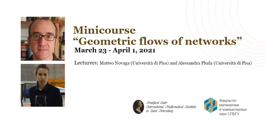 "Minicourse ""Geometric flows of networks"""